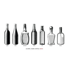 alcohol drink bottle collection hand draw vintage vector image
