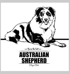 Australian shepherd - for t vector