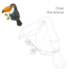 Draw the animal toucan educational game vector image