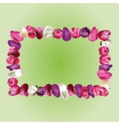 Frame with tulips vector