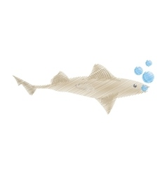 Hand drawing shark fish ocean species bubbles vector