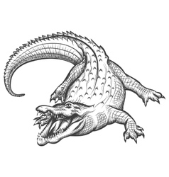 Hand drawn crocodile vector image