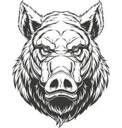 head ferocious boar vector image