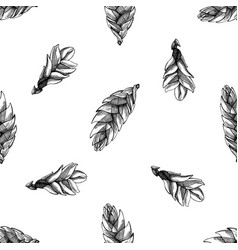 seamless pattern with black and white bromeliad vector image