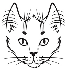 Cute kitten vector