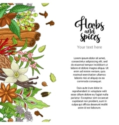 Bakery card design with spices and herbs vector
