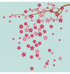 Cherry tree Flowers vector