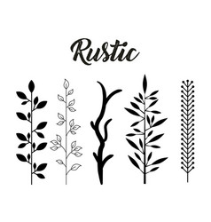 decorative rustic vintage icons set vector image