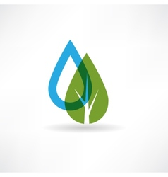 drop on eco tree abstraction icon vector image