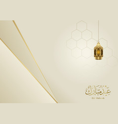 Eid mubarak elegant background vector