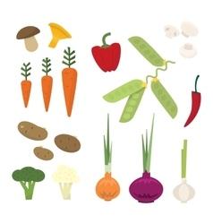 Fresh vegetables from the garden vector