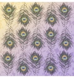 peacock feather in yellow - purple background vector image