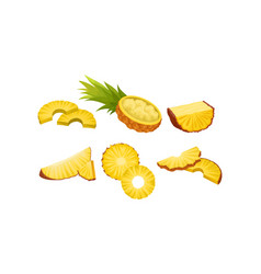 Pineapple cut in different shapes mashed fruit vector