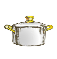 Pot stainless cooking kitchenware color vector