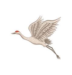 Red-crowned crane in flying action side view vector
