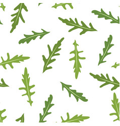 seamless pattern with rucola or arugula vector image