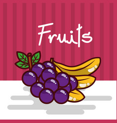 banana and grapes fruits fresh juicy collage vector image