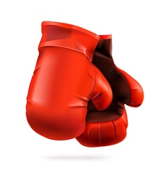 Red boxing gloves detailed vector