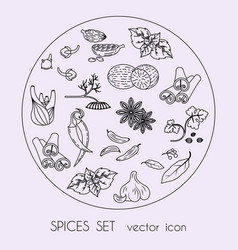 Spices set contour icons vector