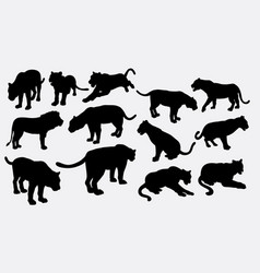 Tiger and lion wild animal silhouette vector