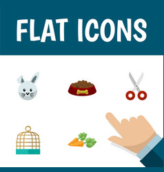 flat icon pets set of root vegetable bunny bird vector image vector image