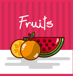 watermelon and orange fruits fresh juicy collage vector image