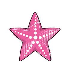 Beauty starfish animal that live in the sea vector