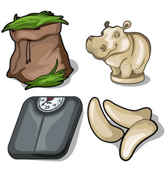 hay hippo scale and fang animals diet concept vector image