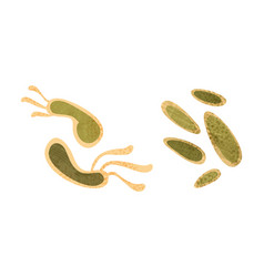 bacteria set disease causing objects vector image