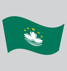 Flag of macau waving on gray background vector