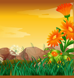 Nature scene with flower garden at sunset vector