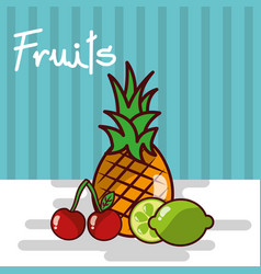 pineapple lemon cherry fruits fresh juicy collage vector image