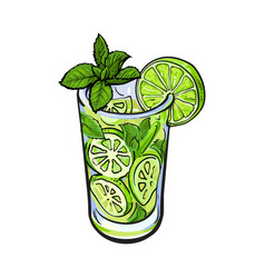 Tall glass full of freshly squeezed lime juice vector