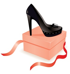 black shoe on the box vector image