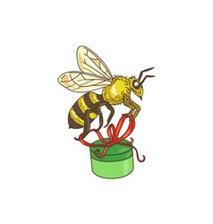 Bee Carrying Gift Box Drawing vector image vector image