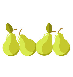 green organic juicy pears with leaves isolated vector image vector image