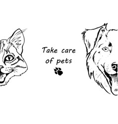 portrait of dog and cat vector image