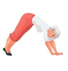 beautiful senior woman in various poses of yoga vector image