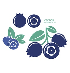Blueberry Icon set vector