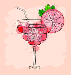 cocktail with pink grapefruit hand drawn vector image