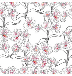 flower seamless pattern with line flowers branch vector image