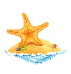 Starfish in the sand vector image vector image
