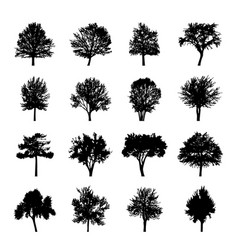 black tree silhouettes nature forest vector image vector image