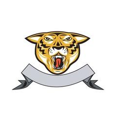 Tiger Head Growl Head Isolated vector image vector image
