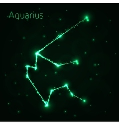 Aquarius silhouette of lights vector image