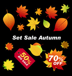 autumn leaves red orange green on black vector image