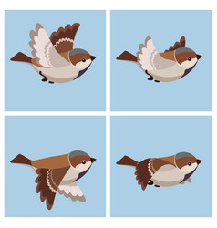 Cartoon flying house sparrow male animation vector