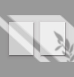 Posters with shadow overlay two white blank vector