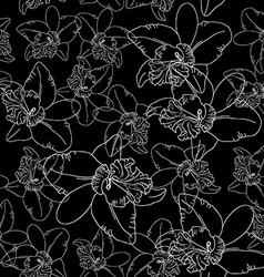 White orchid flowers on black background seamless vector image vector image