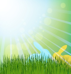 Easter rabbits in a meadow vector image